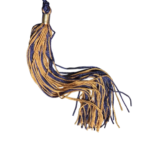 Navy and gold graduation tassel