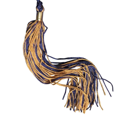Navy and gold graduation tassel